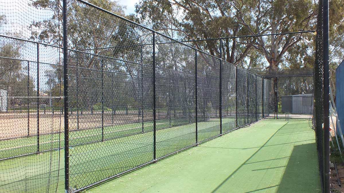 Cricket fencing